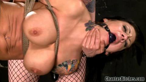 Chantas Bitches Porn Videos Part 16 ( 10 scenes) MiniPack