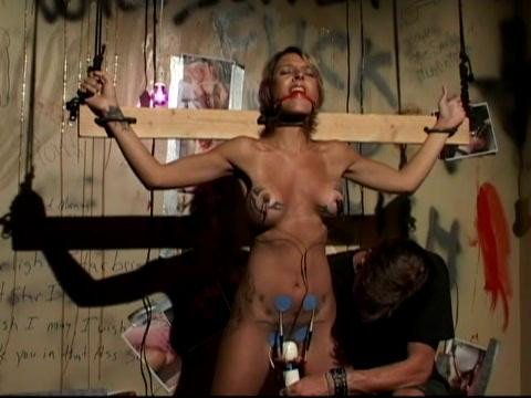 The Damsel Gift (2008)