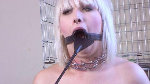 Petgirls Porn Videos Part 15 ( 10 scenes) MiniPack