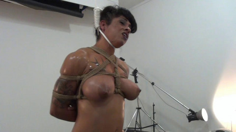 Dani Dupree - Strung Up HD