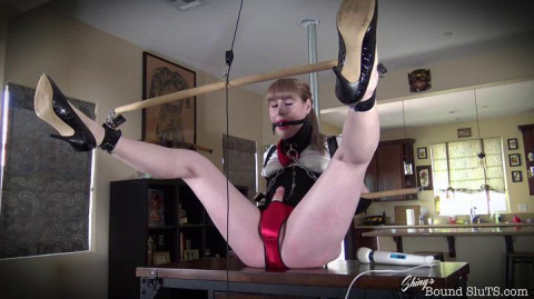 ShinysBoundSluts - Lianna Lawson - The Secretary Part TWO