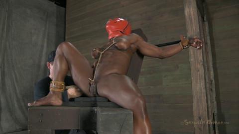Professional Bodybulder Helpless! Ashley Starr