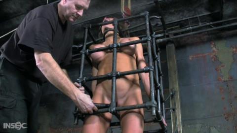 Butt Slut