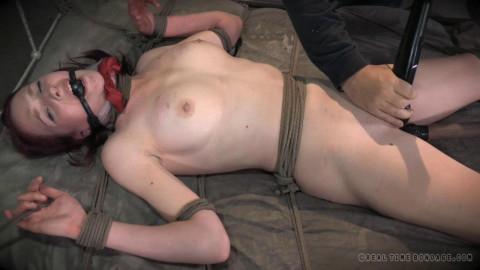 Ashley Lane Cunt Puppy, Part 3 (2014)