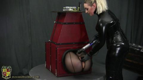 Elises Butt Boxed
