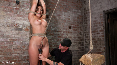Dani Daniels in Brutal Bondage, Tormented, and Made to Cum Uncontrollably.
