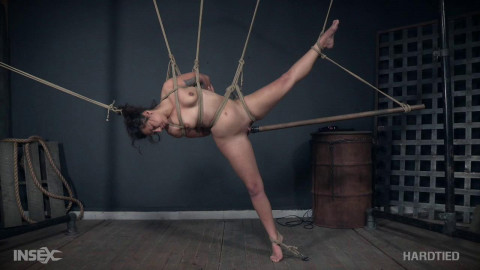 Minnow Monroe - Piggy In a Hogtie