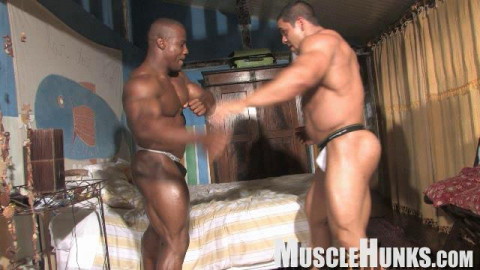 Orso Orfeo, Pablo Blades & Augusto Elia -Bed Wrestling