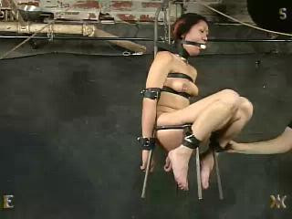 Insex - Rent - Live Feed From November 3, 2002 - (731, 411)