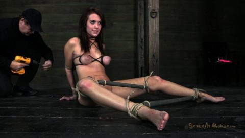 Abuse rope restraint bondage and raw fucking - Alisha Adams