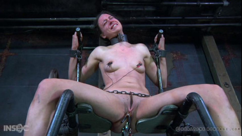 The Servitude of 314 Part 3 (2020)