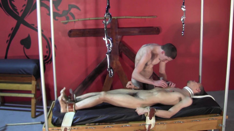 Teased To Hardness & Zapped