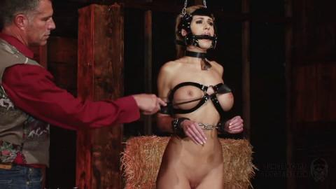 Super bondage, domination and spanking for sexy naked blonde
