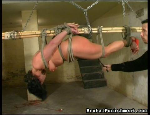 Dittys Pain Is Peters Pleasure