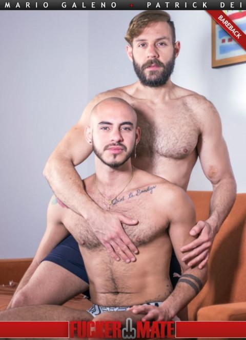 FuckerMate - Mario Galeno & Patrick Dei