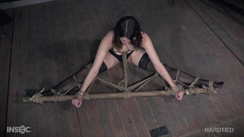 Rope bitch suspended & tormented