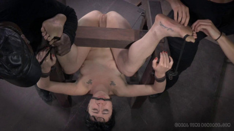 Siouxsie Q Oh! My Goodness, Part 3 (2014)