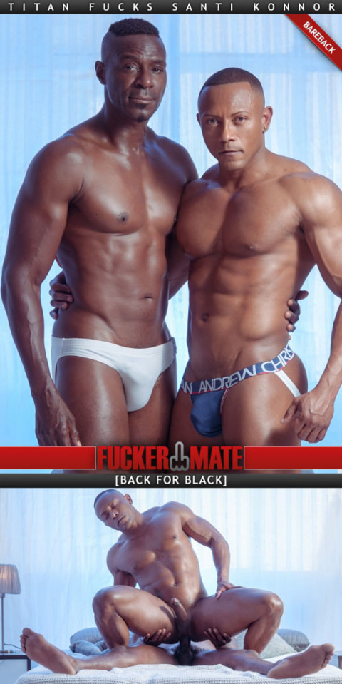 FuckerMate - Back to Black