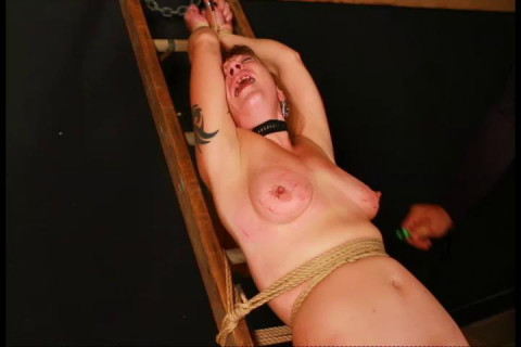Katslut On The Ladder-001