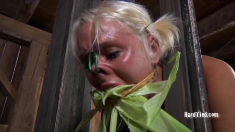 Corn Cob Cunt - Sophie Ryan, Master A