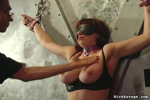 Extreme Tit Torment 19 (2013)