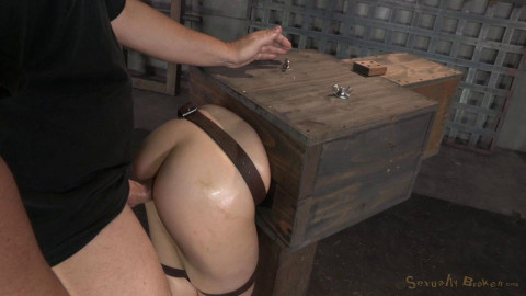 Anally Pounded