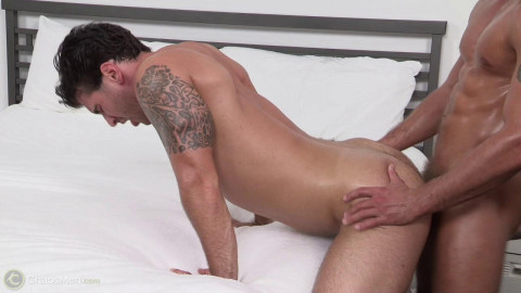 Cooper Reed & Teo Pure