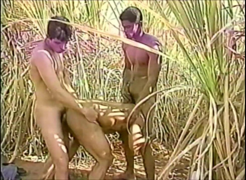 All Worlds Video – Sugar Cane Studs (2000)