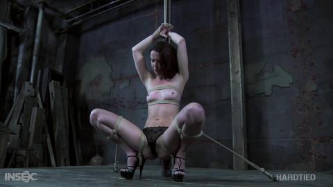 Bdsm HD Porn Videos The Promotion
