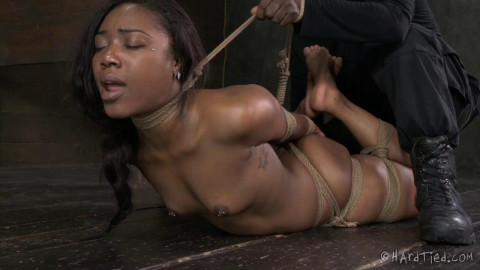 HT - Bitch In A Bag - Chanell Heart, Jack Hammer