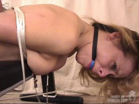 SocietySM - Payton Leigh - Strung Up and Spread Wide
