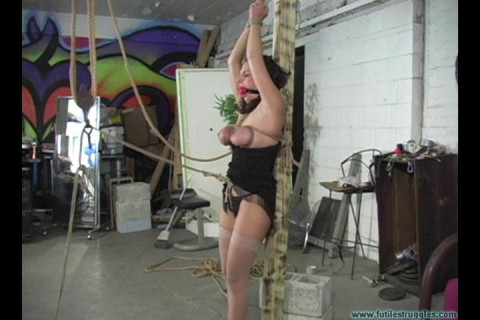 Tight Crotchrope and Clamps