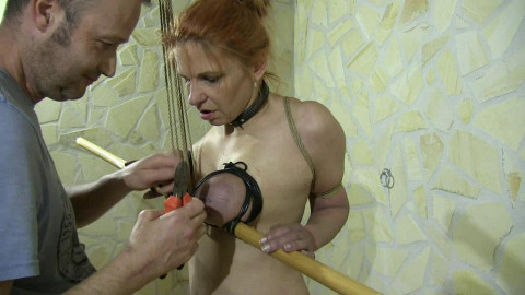 BreastsinPain - Bamboo and Rubber Breasts for Bettine