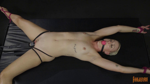 Sexy Spread Eagle Submission