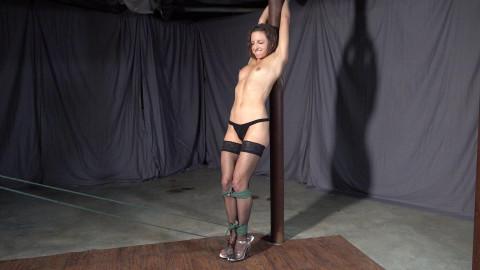 Lora Cross: Lovely Pole Decoration