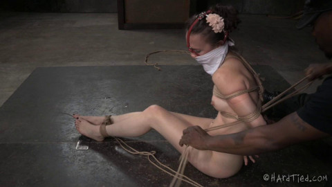 Bonnie Day - Fit To Be Tied
