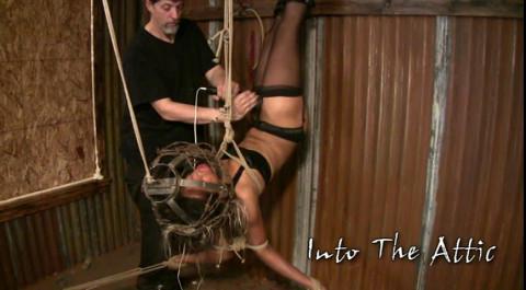 IntoTheAttic - Goldie (25 Jun 2009)