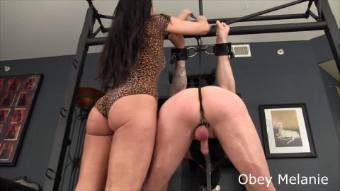 Obey Melanie - Spank your cum maker