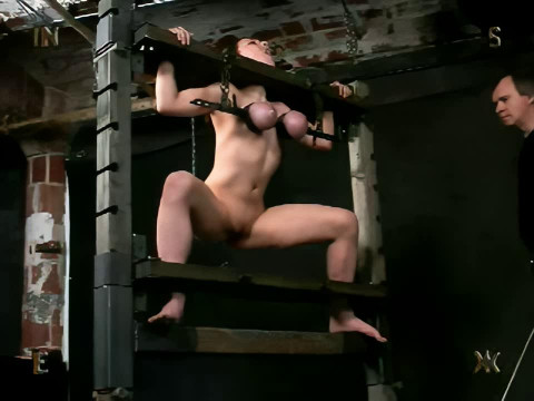 Insex - Pigletss Training (1203s Training)