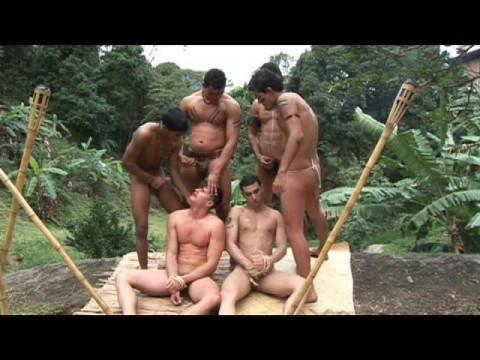 Amazonia (Release)