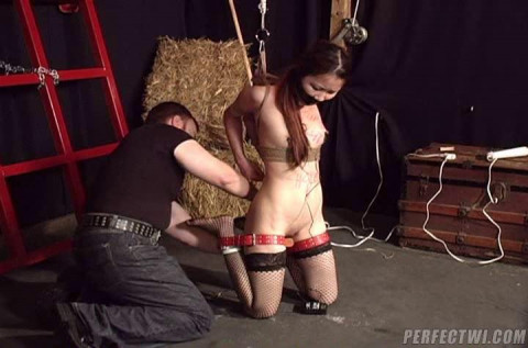 Asians Bound and Fucked.