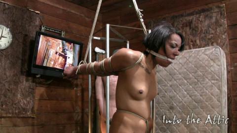 Slave Marley