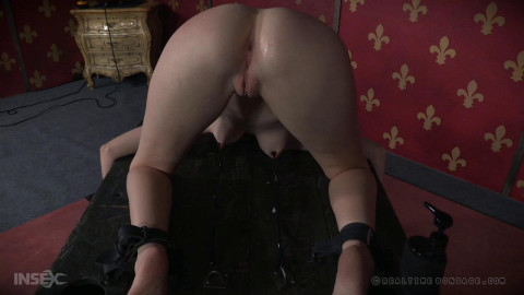 Insatiable Ass Part 2 - Ashley Lane high