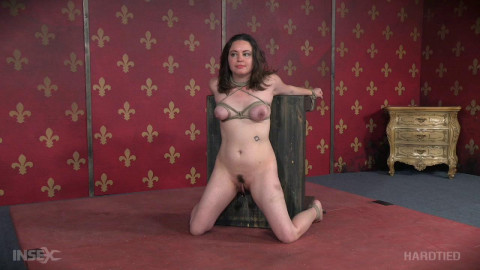 Amy Nicole What the Actual Fuck?! (2016)