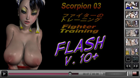 (Flash) Fighter Training - Workout ver.2