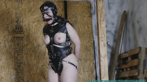 He Wanted a Pony Girl for Christmas 3part - BDSM, Humiliation, Torture HD 720p