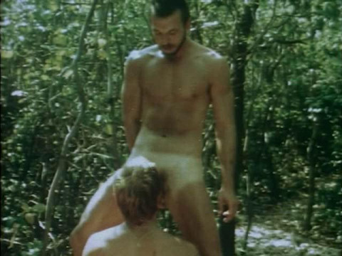 Boys in the Sand (1971)