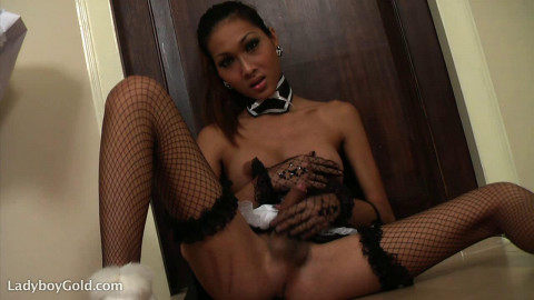 Collection Only Best Lady shemale - 50 exsclusiv clips. part 1.