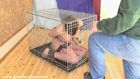 Caged Blowjob Slave Girl xxl