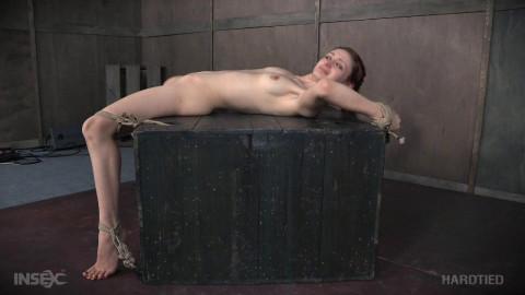 Violet Monroe high